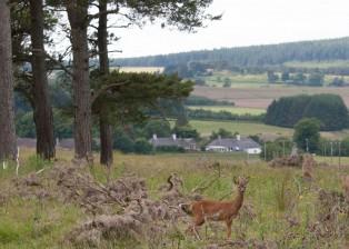 Ruthven Historic Aberdeenshire Village